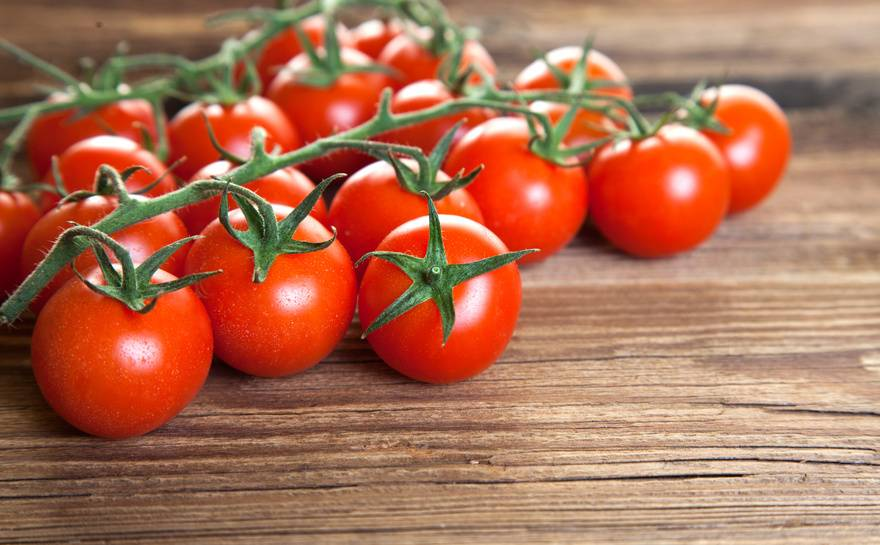 sp tsommer tomaten schmecken am besten besserhaushalten. Black Bedroom Furniture Sets. Home Design Ideas