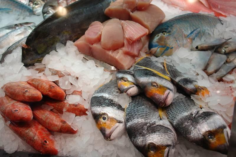 fisch filetieren kurs