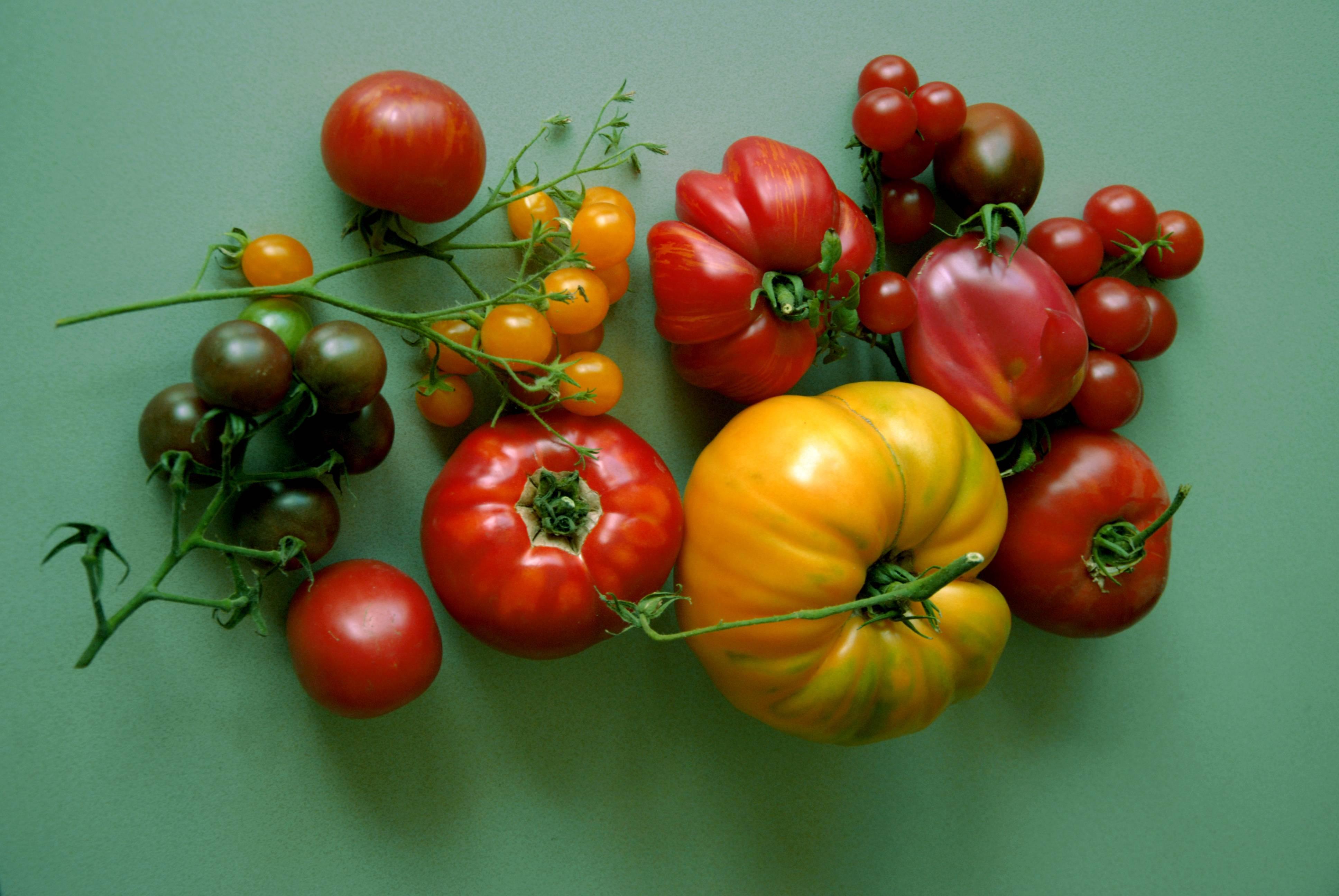 tomaten aus heimischem anbau besserhaushalten. Black Bedroom Furniture Sets. Home Design Ideas