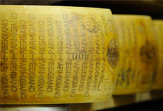 Parmigiano Reggiano meets Sommeliers Teil 5