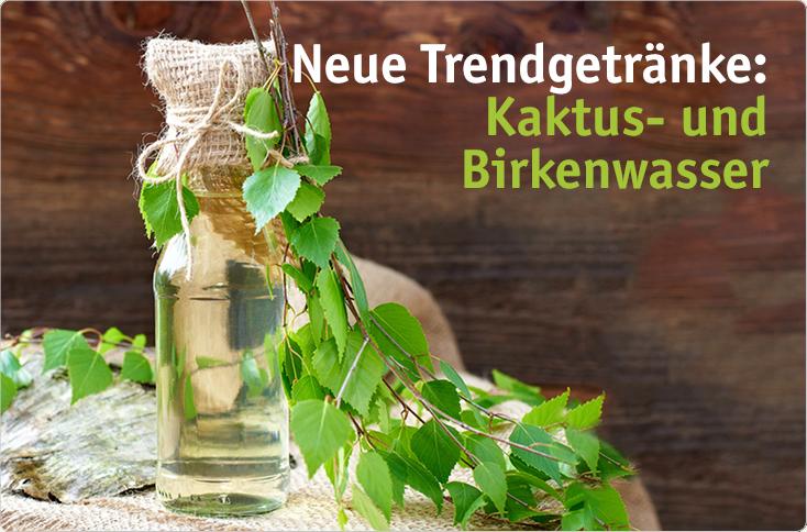 Neue Trendgetränke: Kaktus- & Birkenwasser   besserhaushalten