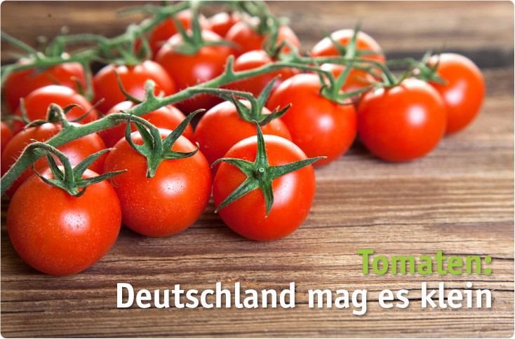 tomaten deutschland mag es klein besserhaushalten. Black Bedroom Furniture Sets. Home Design Ideas
