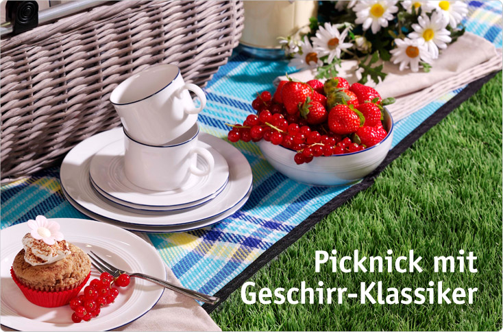 picknick mit geschirr klassiker besserhaushalten. Black Bedroom Furniture Sets. Home Design Ideas