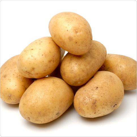Kartoffeln Eiweißgehalt